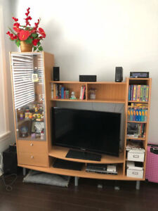 Modern TV Stand/Entertainment Unit