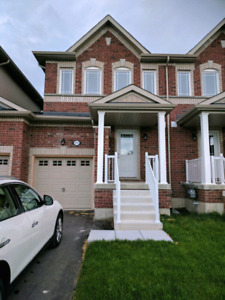 brand new house for lease in Alcona