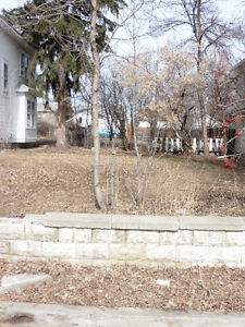 Great lot in fantastic south side location!