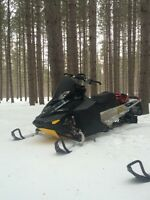 2011 skidoo summit