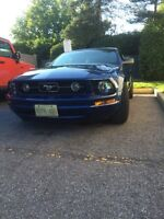 2006 Pony Package Mustang