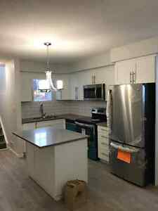 BRAND NEW!!  1 BEDROOM TOWNHOUSE CONDO Kitchener / Waterloo Kitchener Area image 1