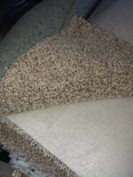 12 STEPS  6x12  CARPET &  PAD & INSTALLATION FOR 325.00