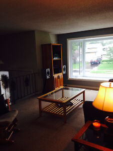 Beautiful 3+1 Bedroom House in Forest Hill Kitchener / Waterloo Kitchener Area image 6