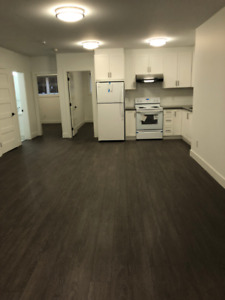 Brand New 2 Bed 1 Bath Basement Suite for Rent - Burnaby