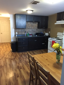 Dog friendly renovated 2 bdrm basement suite