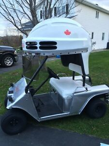 ONE OF A KIND 2014 OLYMPIC GOLD CART!