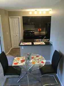 BRAND NEW 2bedroom 2bathroom CONDO A/Cin suite + much more Edmonton Edmonton Area image 4