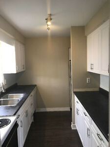 Renovated 3 Bedroom Thorold Home % to Buyer's Agents