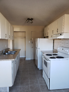 Large two bedroom apartment for rent at 15607-100 Avenue in West