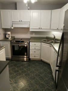 KITCHEN CABINETS - Very good condition