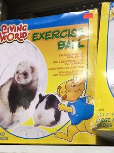 Boule exercice pour petits animaux 20 pouces