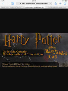 Harry Potter and the Transfigured Town