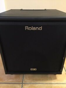 ROLAND SUB 2.1 (SUB only) CUBE MONITOR CM 220