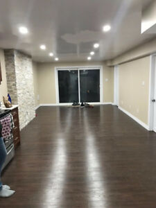 NEW Walkout Basement Rental with Private Entrance