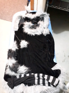 Adult womens racoon costume