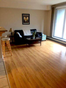 1 Bedroom + Den Available May 1st!