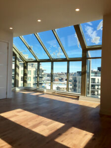 Appartement Condo 4 1/2 à louer à Ville Saint Laurent