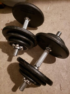 2X Dumbbells /w Spin Locks, 75Lb Weights