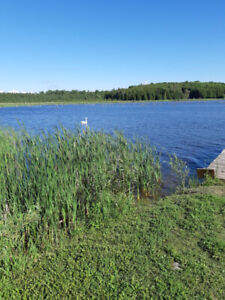 Cottage on Eugenia Lake for rent