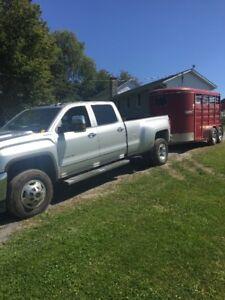 12 ft Bumper pull livestock trailer