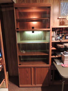 Display Cabinet with base storage. Oak Finish 2 interior lights.