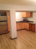 2 bdrm basement suite 2 minutes from canyon meadows c-train