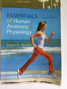 LOYALIST RPN  YEAR 1 TEXTBOOKS FOR SALE