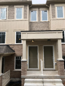 New! Beautiful Two Bedroom Spa Like  Apartment