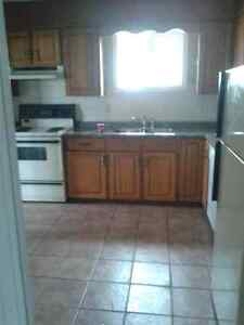 3 Bedroom Available Immediately