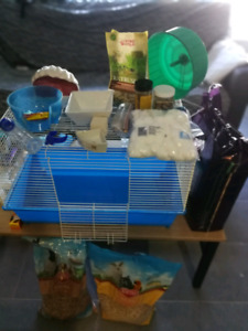 All you need for a fancy bear hamster