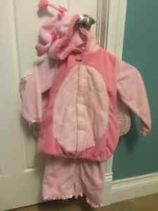 Pink Butterfly Costume Size 4/5 Toddler Kitchener / Waterloo Kitchener Area image 3