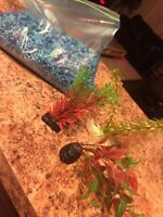 Stones and 3 artificial plants for fluval chi