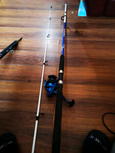 Shakespeare tiger rod with reel