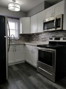 *** HIGH END 1 BEDROOM UNIT FOR RENT, FULLY RENOVATED***