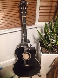 taylor ddx guitar deluxe