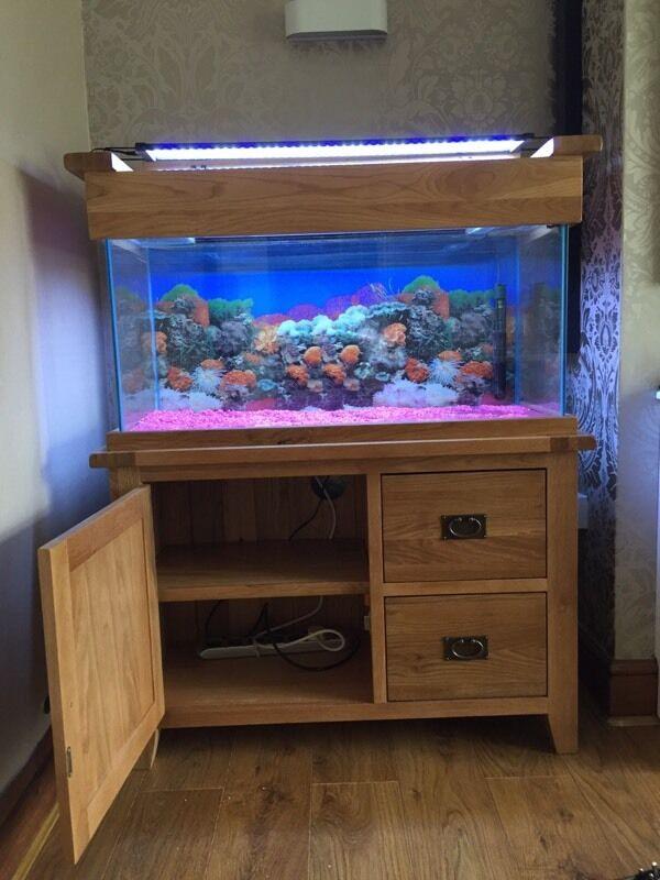 Solid Oak Fish Tank For Sale Full Set Up Still Under