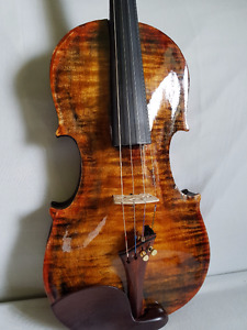 Electric violin unique
