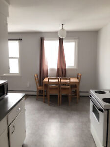 Furnished two bedroom apartment is available for short term