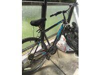 Bike mountain bicycle £90