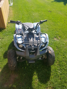 Pit bike and quad for sale