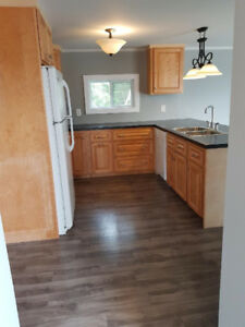 Clean and Modern 2 Bedroom house minutes from New River Beach