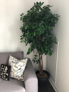 Tall Fake Plant/Tree -  Great Condition!