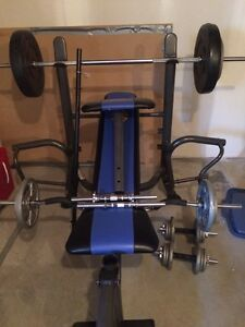 Weights / bars / bench
