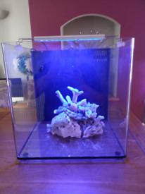 Nano 40 with marine setup