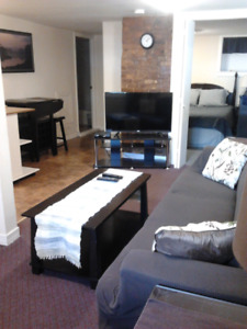 Central, Clean, Quiet, Furnished 1 Bedroom for Rent - Jan 1