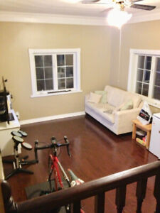 YONGE AND STEELES - Beautiful spacious Extension Unit for rent