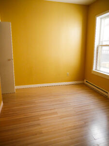 Beautiful Bright Downtown Apartment St. John's Newfoundland image 3