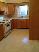 MUST SEE!!! Newly Renovated Student Home! ALL INCLUSIVE!!! 130A