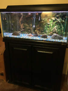 Fish Tank (30 Gallon) with Stand and Accessories